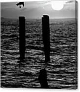 Sunrise Descent Bw - Outer Banks Ocracoke Canvas Print