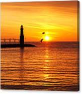 Sunrise Frolic Canvas Print