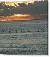 Sunrise In Florida Riviera Canvas Print