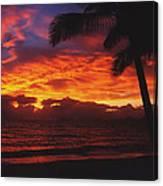 Sunrise In Queensland 2 Canvas Print