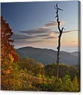Sunrise In Shenandoah National Park Canvas Print