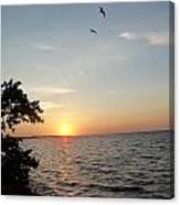 Sunrise Long Key State Park Canvas Print