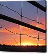 Sunrise On Fence Canvas Print