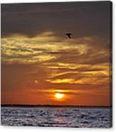 Sunrise On Tampa Bay Canvas Print