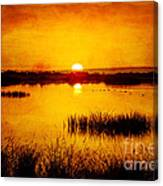Sunrise On The Pond Canvas Print
