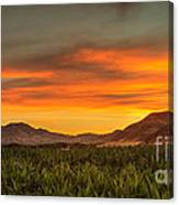 Sunrise Over A Corn Field Canvas Print