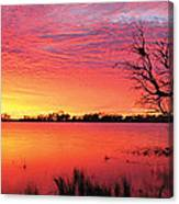 Sunrise Over Coongee Lakes Canvas Print