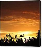 Sunrise Over The Milo Field Canvas Print