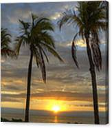 Sunrise Palms Canvas Print