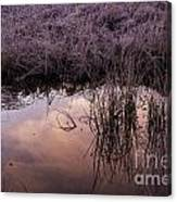 Sunrise Reflection Canvas Print