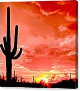 Sunrise Saguaro National Park Canvas Print