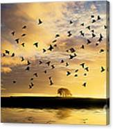 Birds Awaken At Sunrise Canvas Print