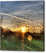 Sunrise Through Grass Canvas Print
