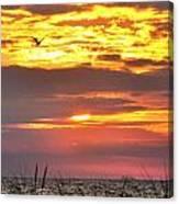 Sunrise Through The Grass Canvas Print