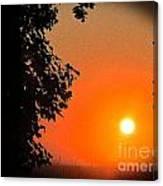 Sunset 365 18 Canvas Print