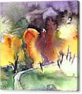 Sunset 49 Canvas Print