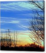 Sunset And 3 Birds Canvas Print