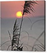 Sunset At 188 Mm Focal Length Canvas Print