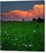 Sunset At A Farm Near Hawkesbury Canvas Print