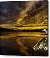 Sunset At Swan Lake  Canvas Print