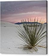 Sunset At White Sands Canvas Print