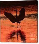 Sunset Dancer Canvas Print