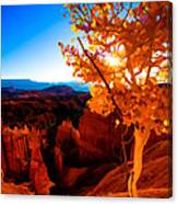 Sunset Fall Canvas Print