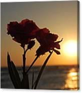 Sunset Flowers Canvas Print