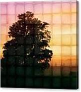 Sunset Grid 2 Canvas Print
