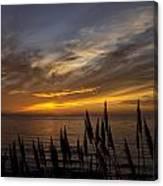 Sunset Hwy. 1calif. Canvas Print