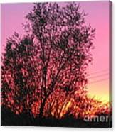 Sunset In April- Silute Lithuania Canvas Print
