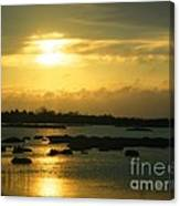 Sunset In Camargue - France Canvas Print