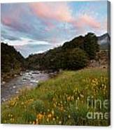 Sunset In Cobb Valley Of Kahurangi Np Of New Zealand Canvas Print