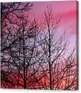sunset in late February Canvas Print