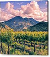 Sunset In Napa Valley Canvas Print