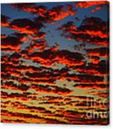 Sunset In The Clouds Canvas Print