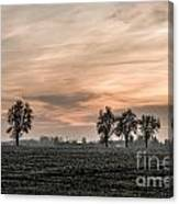 Sunset In The Country - Orange Canvas Print