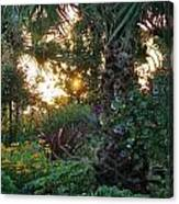 Sunset In The Garden Canvas Print