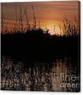 Sunset In The Pantenal Canvas Print