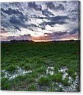 Sunset In The Swamp Canvas Print