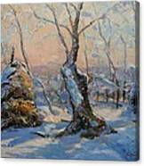 Sunset In The Winter Canvas Print