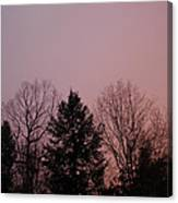 Sunset In The Woods Canvas Print
