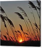 Sunset Island Beach State Park Nj Canvas Print
