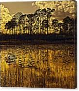 Sunset Jd Canvas Print