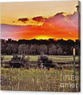 Sunset Meadow Canvas Print