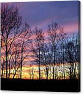 Sunset Of The Century Canvas Print