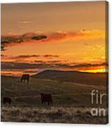 Sunset On Open Range Canvas Print