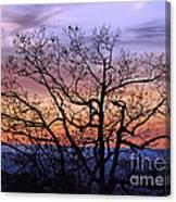 Sunset On Tanners Ridge Canvas Print