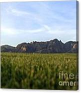 Sunset On The Golf Course Canvas Print