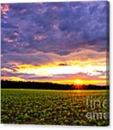 Sunset Over Farmland Canvas Print